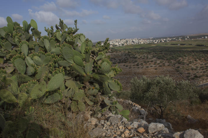 """Palestinian hikers approach the Deir Qalaa, """"Monastery of the Castle,"""" the remains of a Byzantine monastery, over looking the West Bank village of Deir Ballout, background, west of Salfit, Friday, June. 11, 2021. A growing number of Palestinians are taking up hiking, which offers a way to explore the countryside and historical landmarks in the Israeli-occupied West Bank. (AP Photo/Nasser Nasser)"""