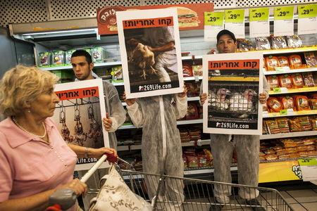 A customer pushes her cart past activists standing in front of meat products and holding placards calling for animal rights, at a supermarket in Tel Aviv, Israel in this November 7, 2013 file photo. REUTERS/Nir Elias/Files
