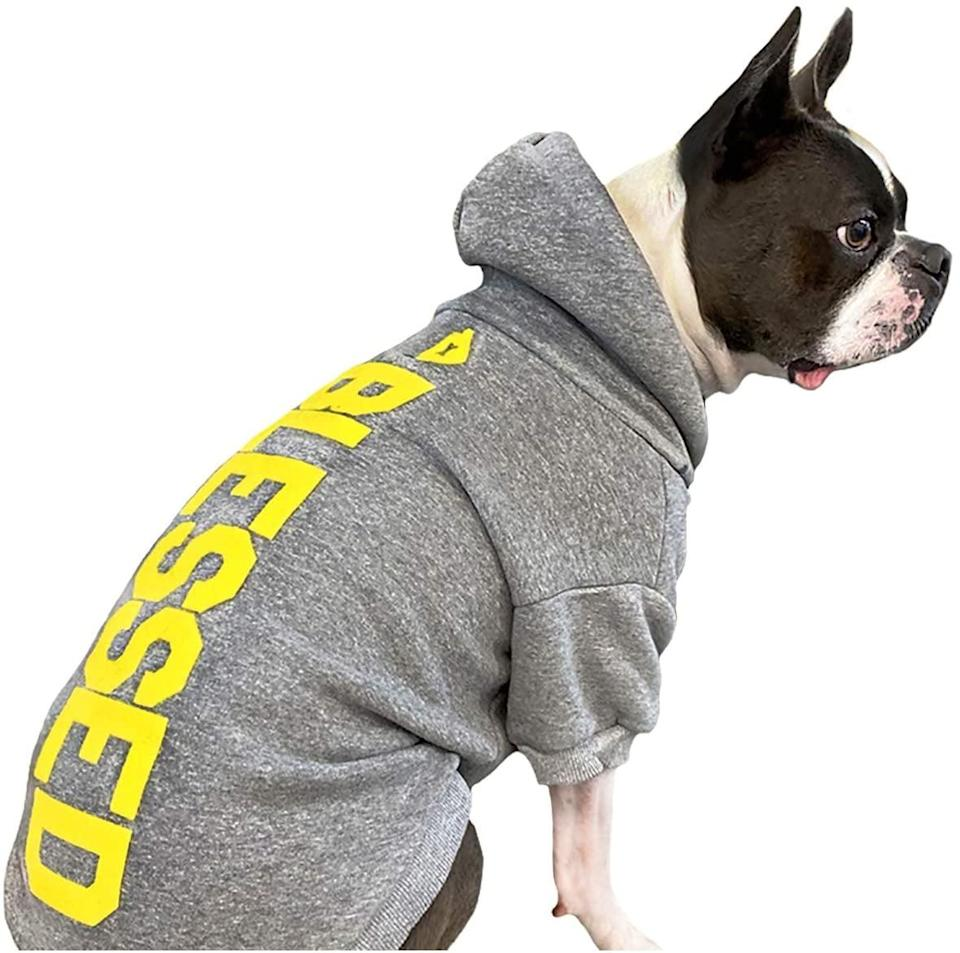 <p><span>House Dogge Blessed D.O.G. Hoodie</span> ($60)</p>
