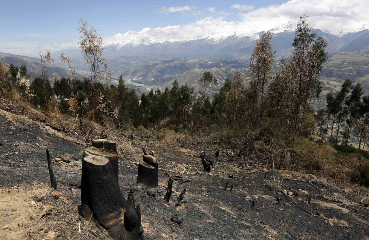 Deforestation is seen in a village in Carhuaz  in the Andean region of Ancash, November 28, 2014. Destruction of the Peruvian Amazon is rising after expanding over more than 145,000 hectares (560 square miles) last year - an 80 percent jump from the start of the century, the government said on Tuesday. A two-week long United Nations climate summit opened on December 1 in Lima, with experts and analysts from around the world gathering to discuss melting glaciers and extreme weather patterns. Picture taken November 28, 2014. REUTERS/ Mariana Bazo (PERU - Tags: SOCIETY ENVIRONMENT AGRICULTURE)