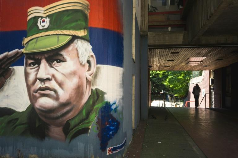 UN judges in The Hague will rule on an appeal by the so-called 'Butcher of Bosnia' Ratko Mladic