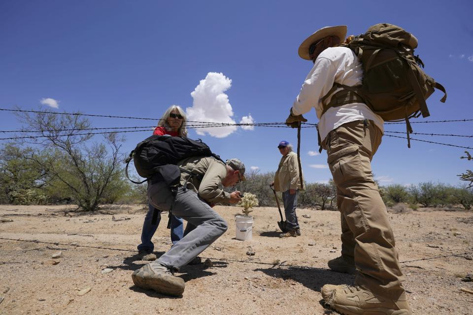 Terry Stanford, background left, and Peter Lucero, right, help David Whitmer, foreground left, get through a barbed wire fence as they and Alvaro Enciso make their way to check on the condition of a cross left to mark a deceased migrant in the desert near Three Points, Ariz., on Tuesday, May 18, 2021. They are members of the volunteer group Tucson Samaritans who help migrants in a variety of ways in Arizona. (AP Photo/Ross D. Franklin)