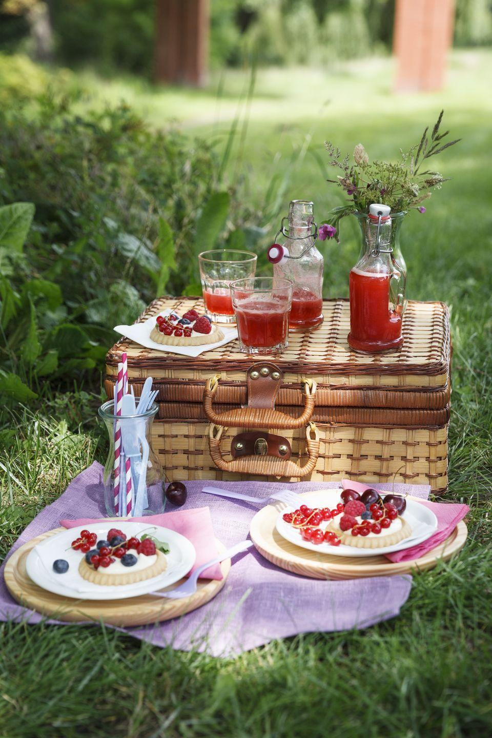 """<p>It's obvious that spending the 4th of July outdoors is ideal, so why not bring food and drinks right to your backyard? You'll appreciate the sunshine and get a good meal in, too.</p><p><a class=""""link rapid-noclick-resp"""" href=""""https://www.amazon.com/Picnic-Piccadilly-Glasses-Cutlery-Corkscrew/dp/B0034A4NYW?tag=syn-yahoo-20&ascsubtag=%5Bartid%7C10055.g.21749867%5Bsrc%7Cyahoo-us"""" rel=""""nofollow noopener"""" target=""""_blank"""" data-ylk=""""slk:SHOP PICNIC BASKETS"""">SHOP PICNIC BASKETS</a> </p>"""
