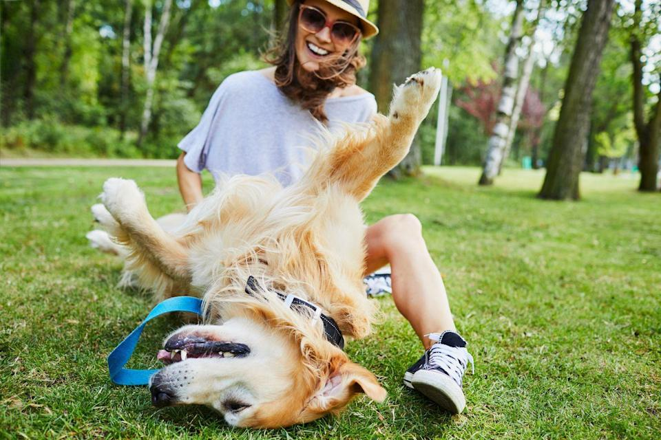 """<p>Kind of. """"Our mind, body, and soul are renewed when we play,"""" explains Hall. So go outside for a game of tag with your child or <a href=""""https://journals.lww.com/nurseeducatoronline/Abstract/2018/05000/Effect_of_Canine_Play_Interventions_as_a_Stress.16.aspx"""" rel=""""nofollow noopener"""" target=""""_blank"""" data-ylk=""""slk:run around with your pup"""" class=""""link rapid-noclick-resp"""">run around with your pup</a>—doctor's orders!</p>"""