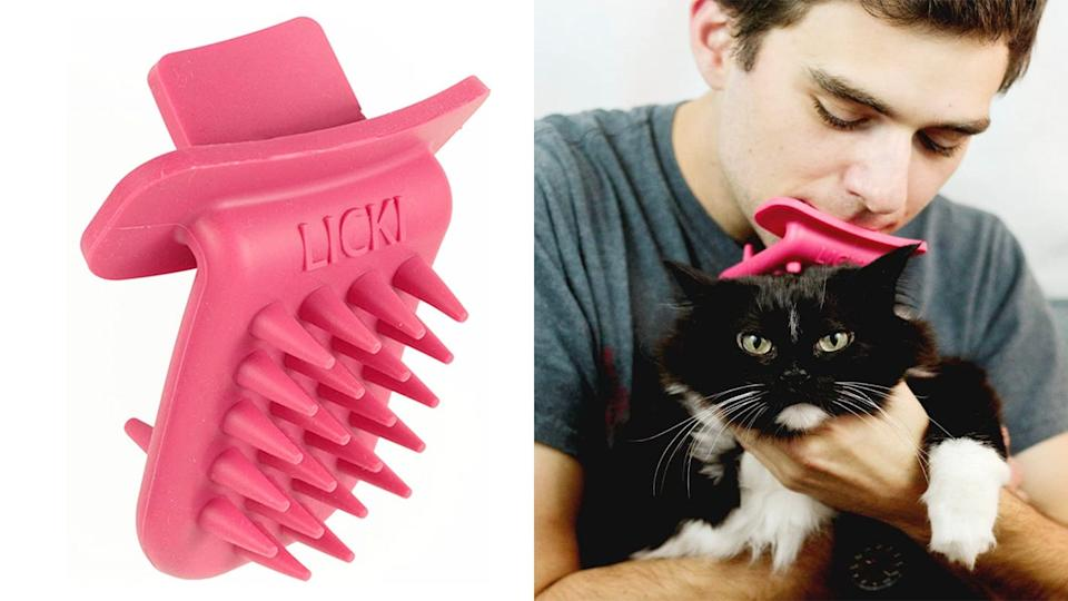 The cat will hate you, but on the bright side, it'll be hilarious.