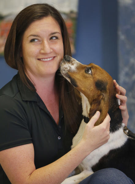 Elvis, a 2-year-old beagle, enjoys a moment with Erin Curry at Iron Heart Performance Dog Center in Shawnee, Kan., Monday, Oct. 28, 2013. Elvis sniffs proteins from polar bears and is demonstrating 97% accuracy in positive identification of samples from pregnant females. The 2-year-old has been specially trained for a year by a Kansas handler who has taught dogs to sniff out everything from explosives to bed bugs. (AP Photo/Orlin Wagner)