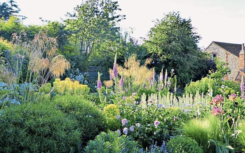 Some of the borders in Clare Coulson's garden on the Suffolk coast - Clare Coulson