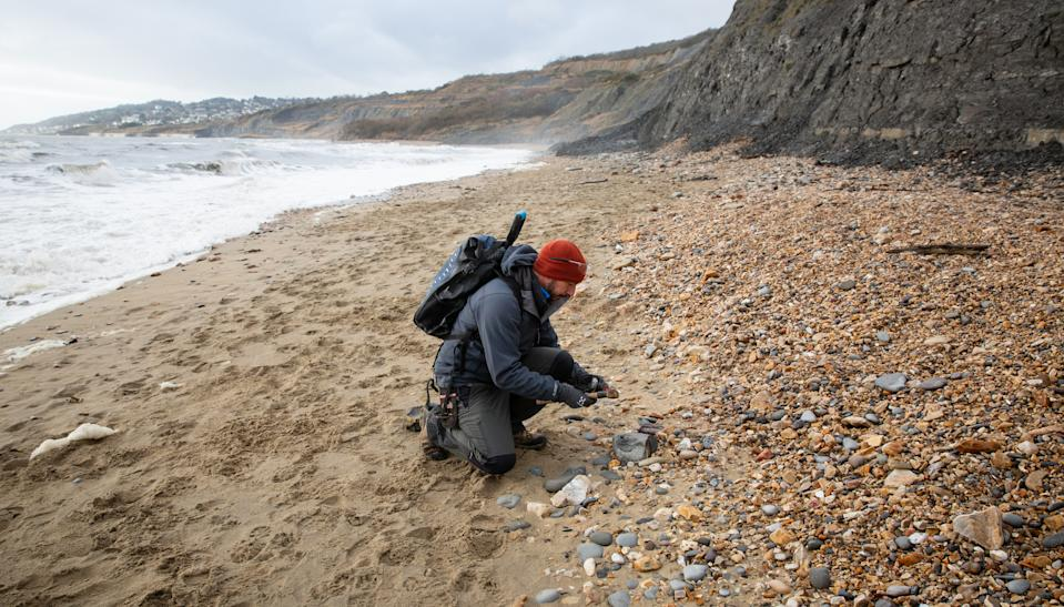 Go fossil hunting on the Jurassic Coast. [Photo: Visit Dorset]