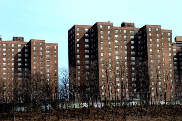 The outside of a Bronx, New York, public housing project.