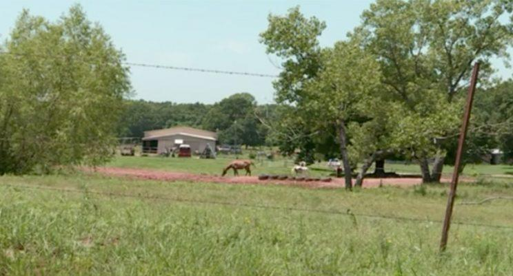 A 15-year-old was found living with farm animals and subsisting on a diet of twigs, leaves and grass in Meeker, Oklahoma.