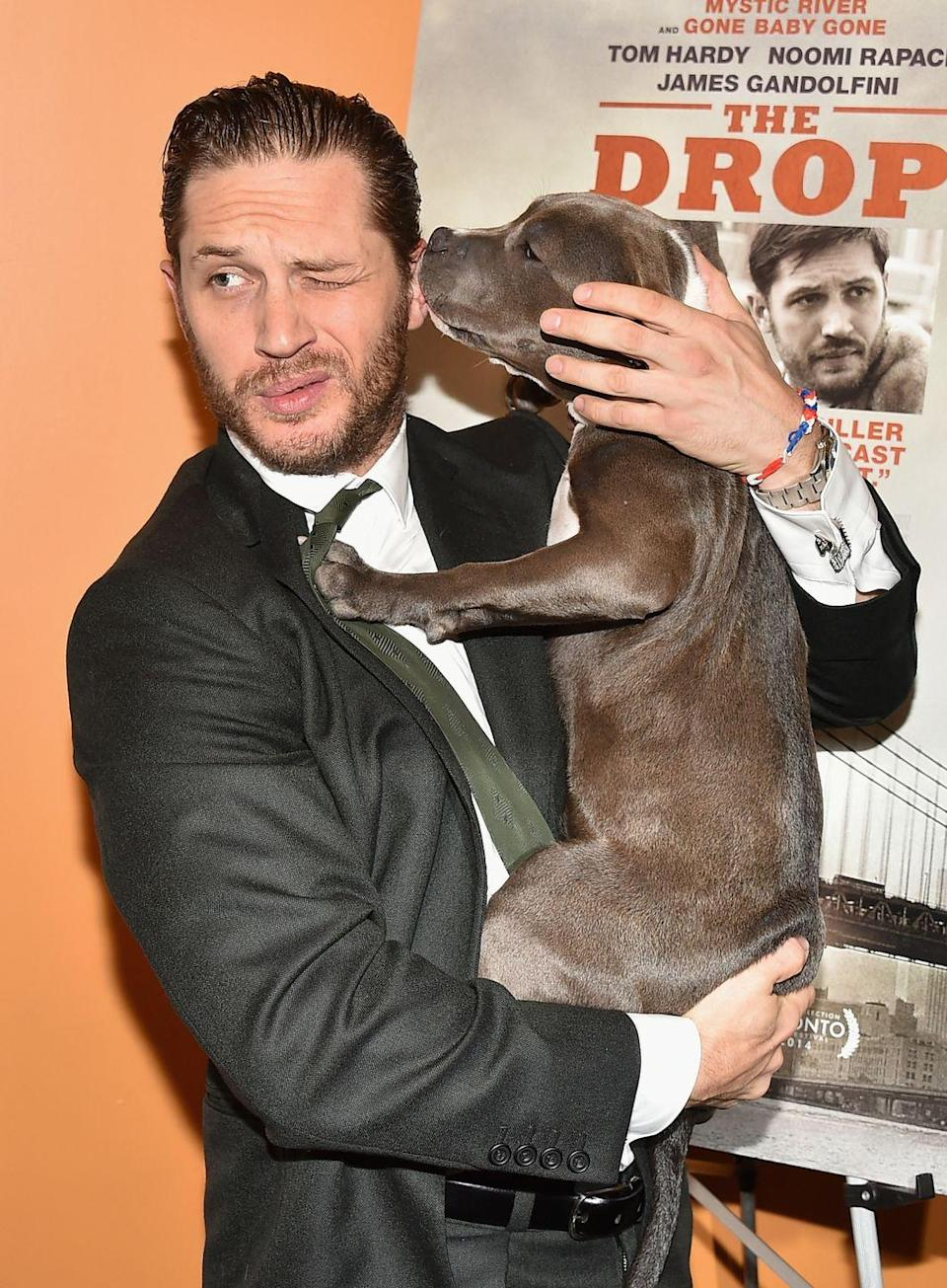 <p>Tom Hardy is a major dog lover and was left devastated when his canine Woody (who accompanied him to the Legend premiere in 2015) passed away a few years ago. </p><p>Here's Hardy with Rocco, who starred in his film The Drop in 2014.</p>