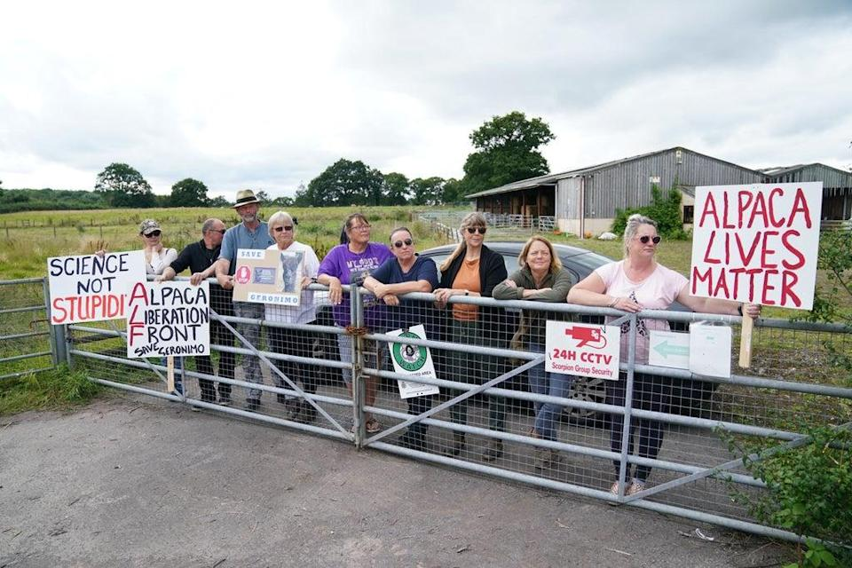 Supporters of Geronimo the alpaca outside Shepherds Close Farm in Wooton Under Edge, Gloucestershire (PA)