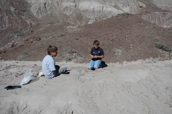 One of Tom Williamson's 12-year-old twin sons found the delicate bird fossil. (The twins are now 20 years old, but still talk with their dad about fossils.)