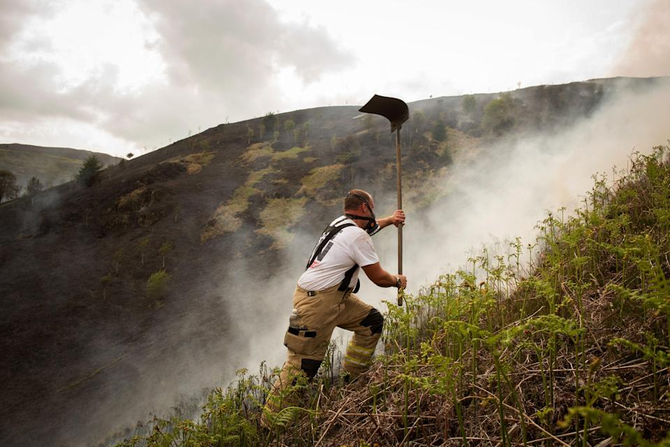 Wildfires are more frequent on a warming planet, and also exacerbate the problem (Getty Images)