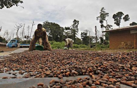 Olam completes acquisition of ADM's cocoa business