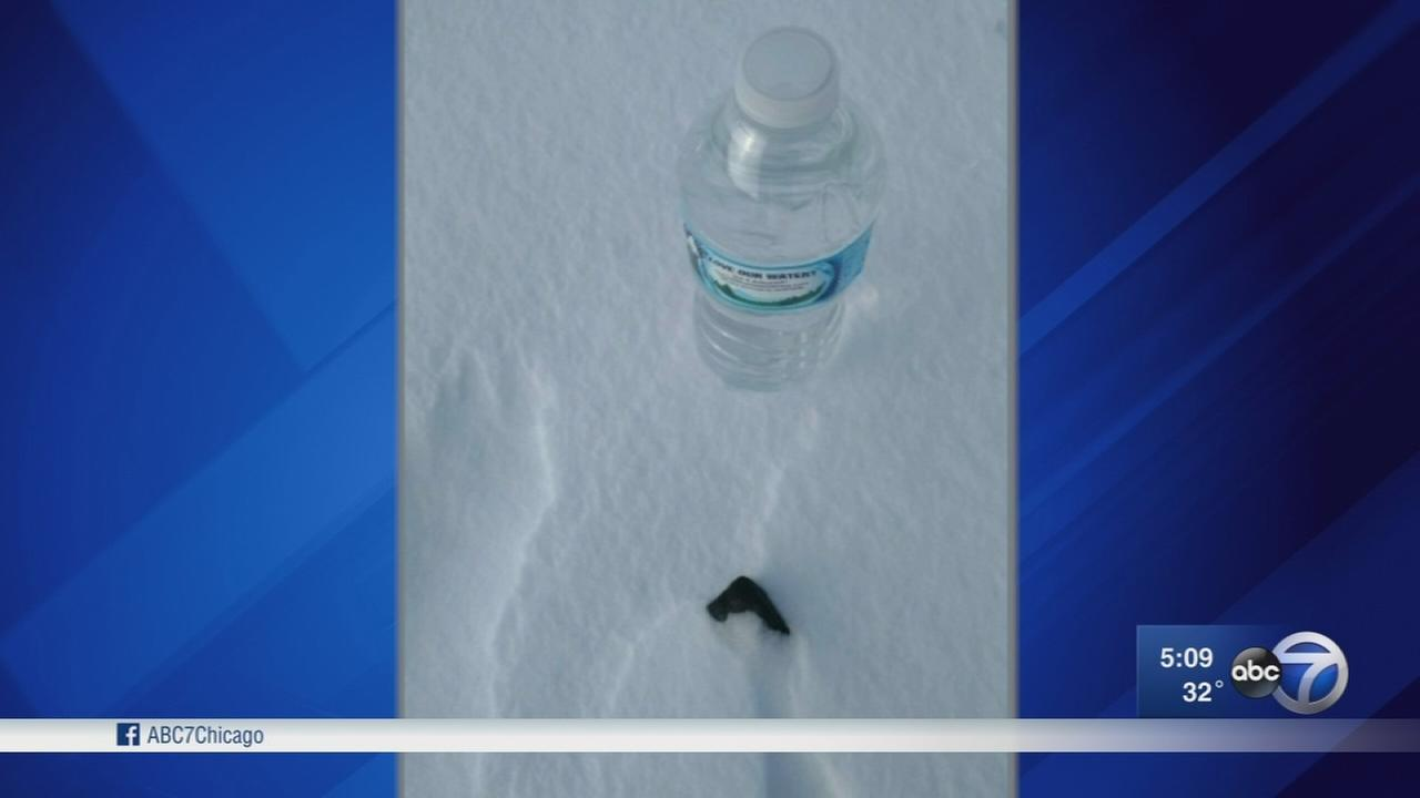 Pieces of the meteor that lit up the sky earlier this week were located by meteorite hunters in Michigan on Thursday.