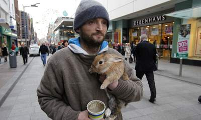 Man Who Threw Rabbit In River Is Jailed