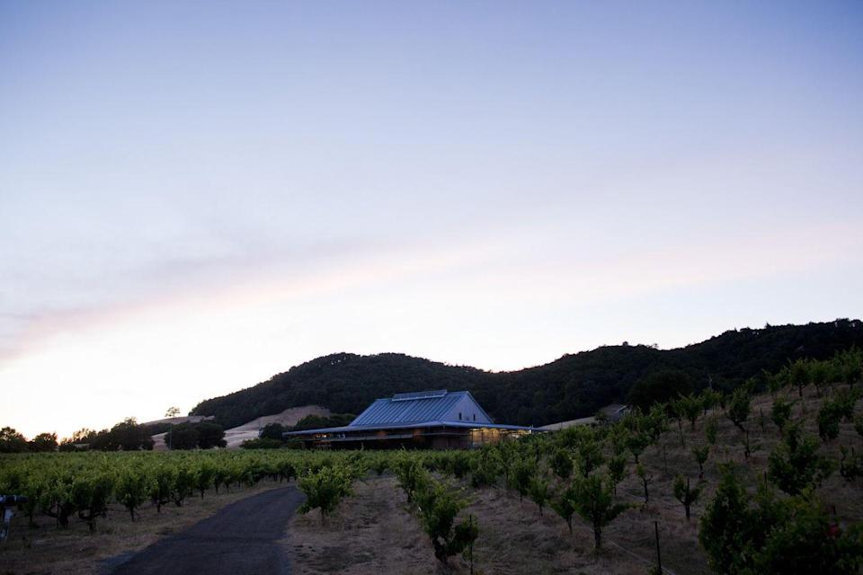 """<p><a href=""""https://www.ridgewine.com/"""" rel=""""nofollow noopener"""" target=""""_blank"""" data-ylk=""""slk:Ridge Vineyards"""" class=""""link rapid-noclick-resp"""">Ridge Vineyards</a> is famous for single-vineyard, """"pre-industrial"""" winemaking that relies more on the impeccability of the grounds and Mother Nature than machinery and additives. The sustainable winery even labels every action and ingredient used to produce each bottle. While Ridge focuses primarily on reds, the label also offers highly rated Chardonnay.</p><p>Ridge Vineyards has two estates that hold tasting experiences: Lytton Springs in Healdsburg (shown here) and Monte Bello in Cupertino. The Lytton Springs property features a Century Tour & Library Tasting that immerses visitors into the world of sustainable California winemaking and allows one to experience the best Ridge Vineyards vintages from the property's gorgeous terrace overlooking 155-year-old grapes. <em>Reservations required.</em></p>"""