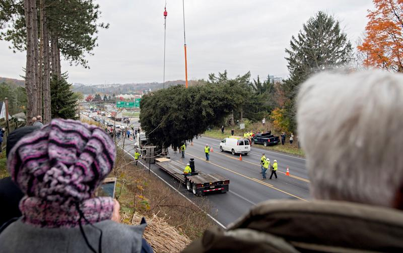 Community members watch as the 75-foot Norway spruce is loaded onto a truck to be taken to Rockefeller Center in New York City on Thursday, Nov. 9.