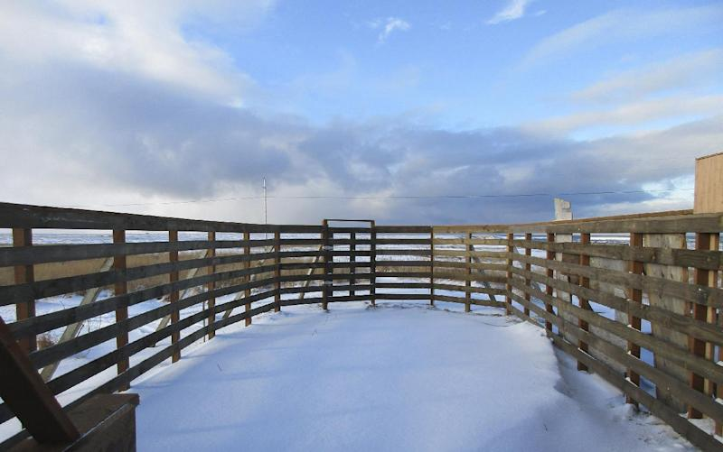 This Nov. 16, 2015 photo provided by Dale Smith shows a revitalized fencing for reindeer in Mekoryuk, Alaska. The fencing is part of a federally funded endeavor to expand the tribal government's commercial reindeer subsidiary with the herd that was introduced a century ago. (Dale Smith via AP)