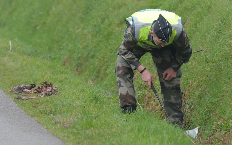 A French gendarme combs a ditch as part of search operations for the Troadec family, missing since February 16 - Credit: AFP/AFP