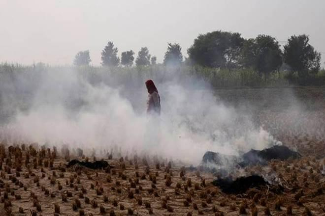 stubble burning, Supreme Court, NCR residents, delhi pollution level, air pollution, crop burning, Maharashtra drought, Haryana, Punjab