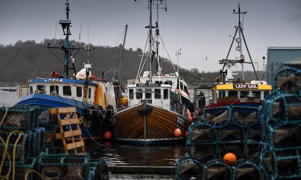 Fishing boats at Tarbert harbour in Scotland