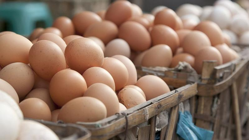 Why Americans Refrigerate Eggs and Europeans Don't