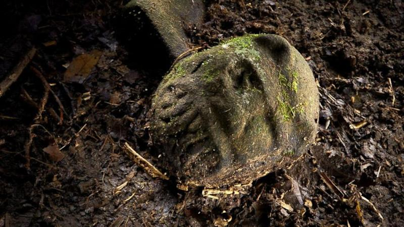 'Lost City': Honduras Expedition Team Discovers Untouched Ruins