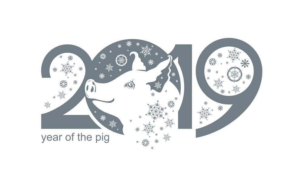 2019 marks the Year of the Pig [Photo: Getty]