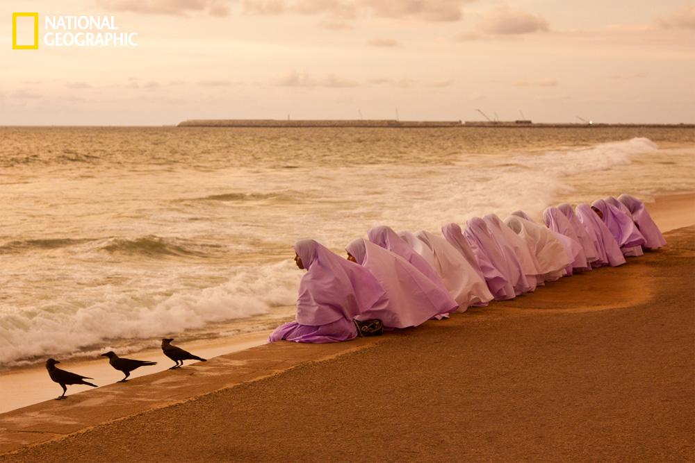 Photograph courtesy Rad Danesh/National Geographic Your Shot A group of Muslim students watching the sunset at Galle Face, Colombo, Sri Lanka