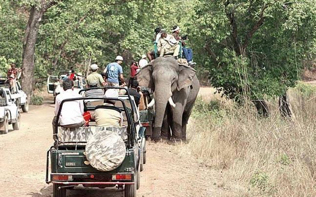 Government gets tough on eco-tourism, frames new guidelines to manage parks, sanctuaries