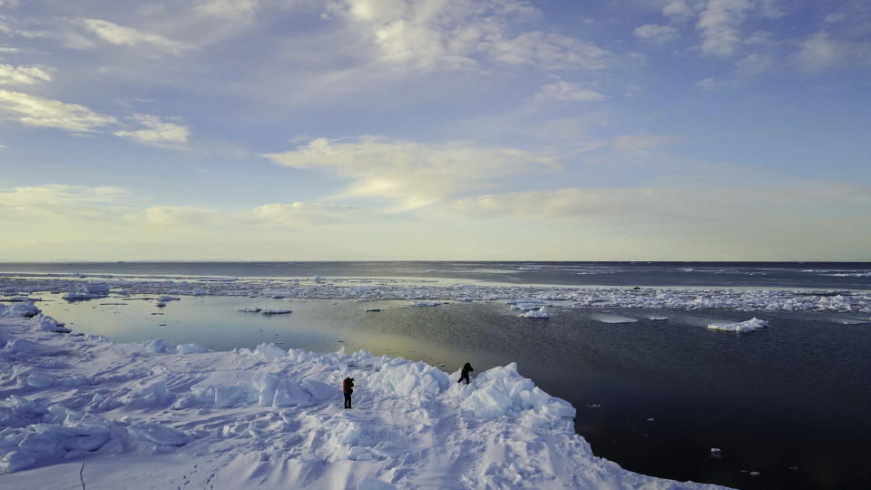 sea ice baffin island Credit: by wildestanimal. Moment. Getty Images
