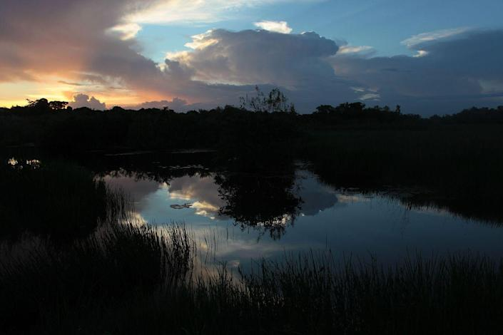 <p>The sky reflects on the water at the Everglades National Park, Florida. // August 5, 2010</p>