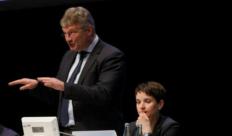 Petry and Meuthen are battling for the soul of the AfD party