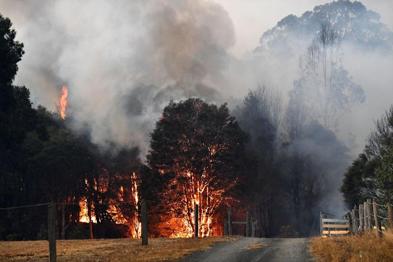 A property on fire near Nowra. Source: Getty