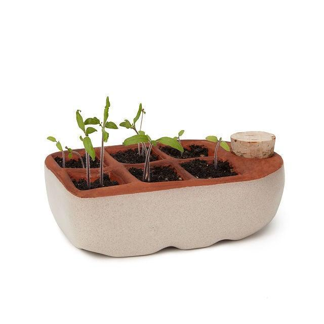 """<h2>Uncommon Goods Self-Watering Seedling Starter</h2><br><strong>Best For: Growing Small Veggies<br></strong>If you want to start a smaller scale farm, let's say for your city apartment, then check out this self-watering seedling starter. The porous terracotta tray wicks up moisture from the bottom reservoir to help your veggie seedlings (not included) prosper. <br><br><em>Shop</em> <strong><em><a href=""""http://uncommongoods.com"""" rel=""""nofollow noopener"""" target=""""_blank"""" data-ylk=""""slk:Uncommon Goods"""" class=""""link rapid-noclick-resp"""">Uncommon Goods</a></em></strong><br><br><strong>Uncommon Goods</strong> Self-Watering Seedling Starter, $, available at <a href=""""https://go.skimresources.com/?id=30283X879131&url=https%3A%2F%2Fwww.uncommongoods.com%2Fproduct%2Fself-watering-seedling-starter"""" rel=""""nofollow noopener"""" target=""""_blank"""" data-ylk=""""slk:Uncommon Goods"""" class=""""link rapid-noclick-resp"""">Uncommon Goods</a>"""