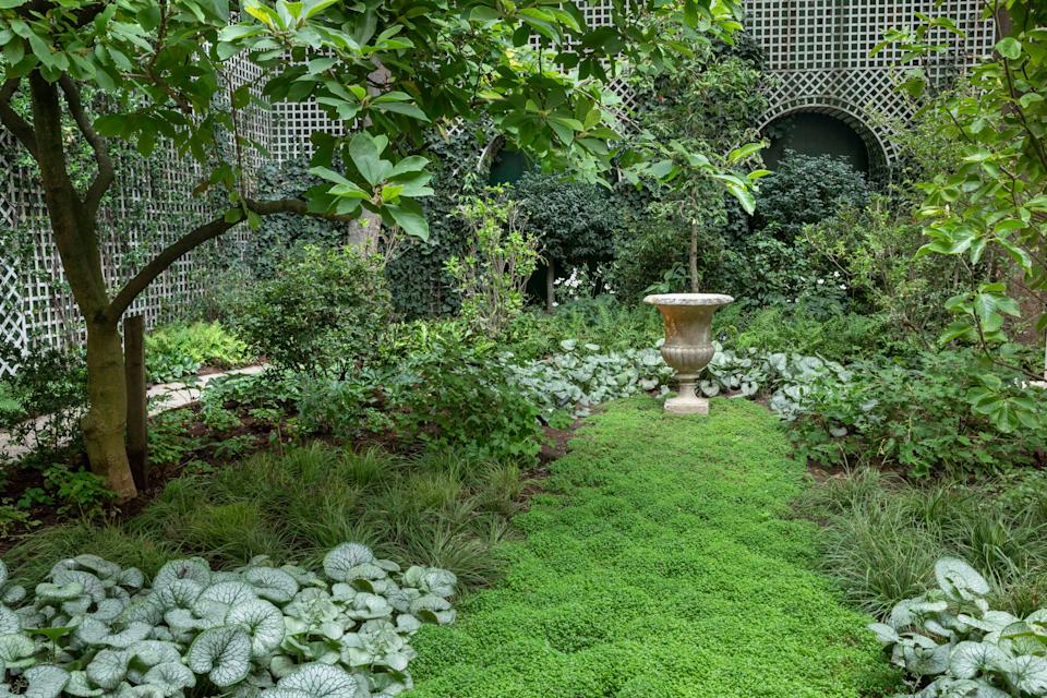 "The woodland features a tapestry of ground cover, including silver Brunnera ""Jack Frost,"" and an emerald ""lawn"" of soleirolia, leading the eye to an antique stone urn."