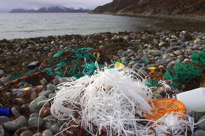 Sea sick: Plastic garbage in the North Atlantic Ocean skyrocketing