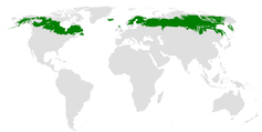 Map showing boreal forest regions