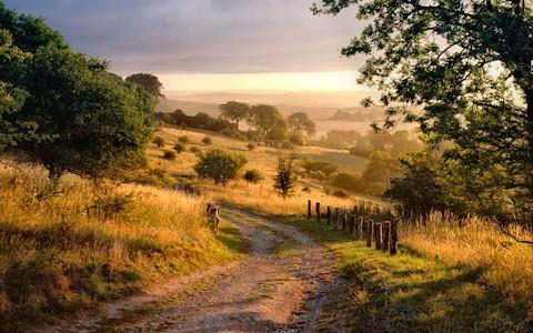 the Chilterns - Credit: Getty