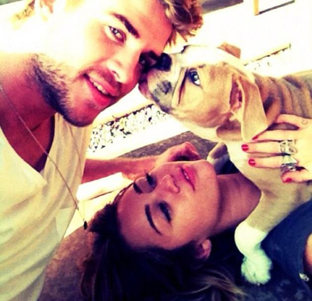 "Celebrity photos: Miley Cyrus regularly tweets photos of her pets, but it's unusual to see a snap of her with new fiancé Liam Hemsworth. However, this week she posted a picture of the pair with their dog, along with the caption: ""'I love being a 'fiancee.'' She went on to tweet: ""Will I ever quit staring at my finger?''"