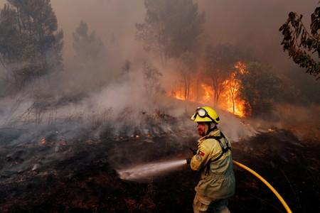 Firefighters help to put out a forest fire near the village of Vila de Rei
