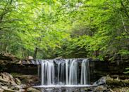 <p><strong>Best camping in Pennsylvania:</strong> Ricketts Glen State Park Campground </p> <p>Ricketts Glen Campground sits atop a forested peninsula that juts into the pristine waters of Lake Jean. But lakeside hangs are far from the top activity in the park. Meander through beech and hemlock stands, while taking in the area's 22 waterfalls, finishing at the most striking: the 94-foot Ganoga Falls.</p>