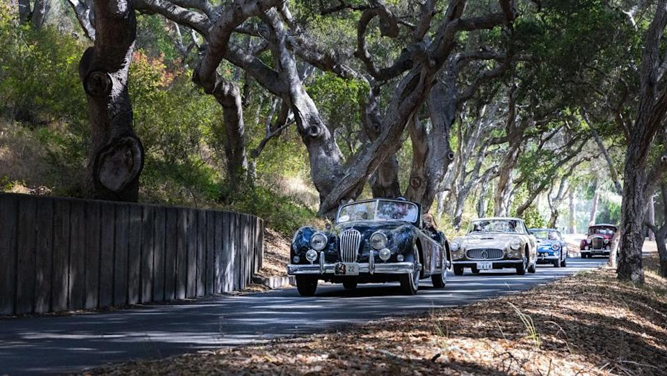 A convoy of classics on the 2021 Pebble Beach Tour d'Elegance. - Credit: Photo by Tom O'Neal, courtesy of Rolex.