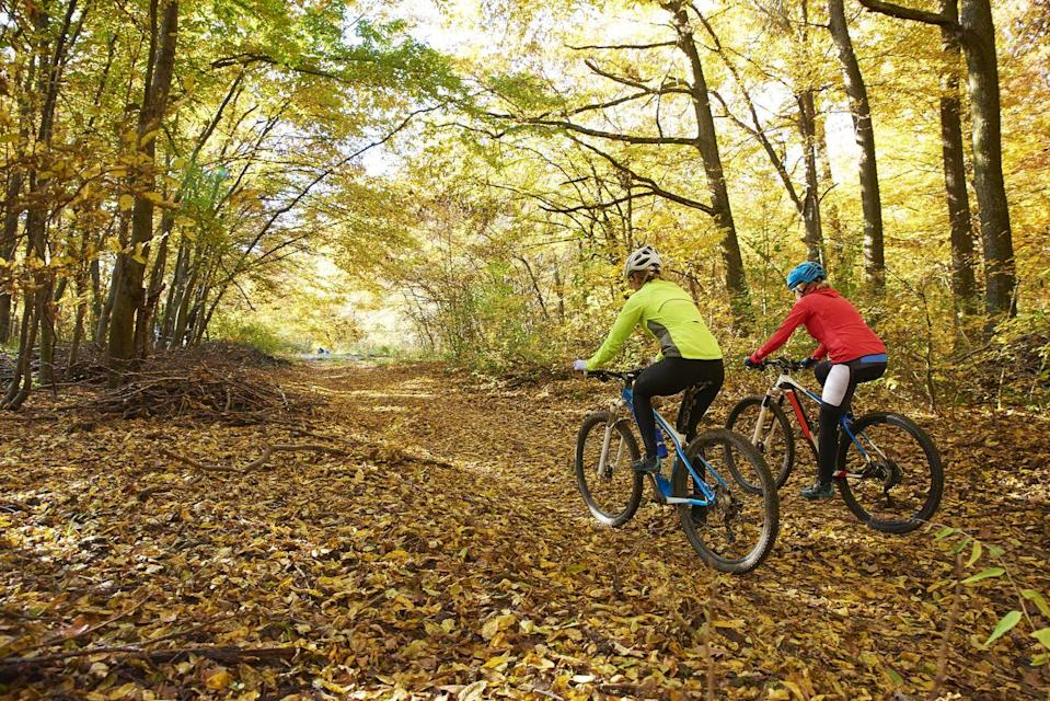 <p>The cooler weather is perfect for working up a sweat. Grab a bike and explore your city—bonus points for taking a new route you've never experienced before.</p>