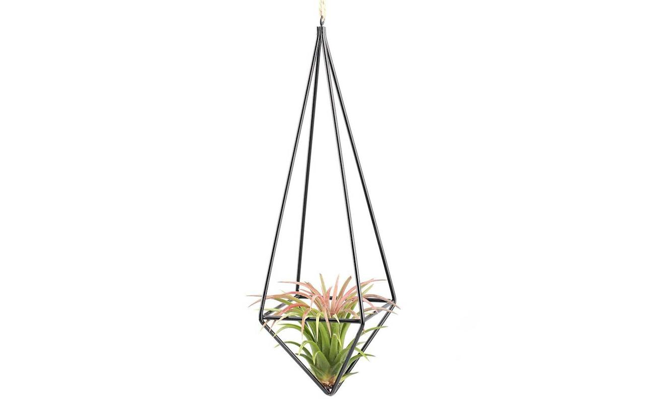 """<p>Perfect for friends or family who inhabit small space. These hanging plants are lovely to look at, and come at a fraction of the price of traditional standing plants.</p> <p>To buy: holder, <a href=""""https://www.amazon.com/gp/product/B01CZNP3FG/ref=as_li_tl?ie=UTF8&camp=1789&creative=9325&linkCode=as2&creativeASIN=B01CZNP3FG&tag=travandleis07-20&ascsubtag=d41d8cd98f00b204e9800998ecf8427e"""" target=""""_blank"""">amazon.com</a>, from $8; plants, <a href=""""https://www.amazon.com/gp/product/B019C2B4WO/ref=as_li_tl?ie=UTF8&camp=1789&creative=9325&linkCode=as2&creativeASIN=B019C2B4WO&tag=travandleis07-20&ascsubtag=d41d8cd98f00b204e9800998ecf8427e"""" target=""""_blank"""">amazon.com</a>, from $9</p>"""
