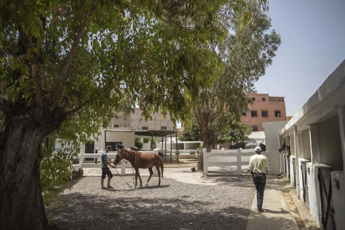 A man holds his sick horse at the SPANA animal shelter in Marrakech, Morocco, Wednesday, July 22, 2020. Morocco's restrictions to counter the coronavirus pandemic have taken a toll on the carriage horses in the tourist mecca of Marrakech. Some owners struggle to feed them, and an animal protection group says hundreds of Morocco's horses and donkeys face starvation amid the collapsing tourism industry. (AP Photo/Mosa'ab Elshamy)