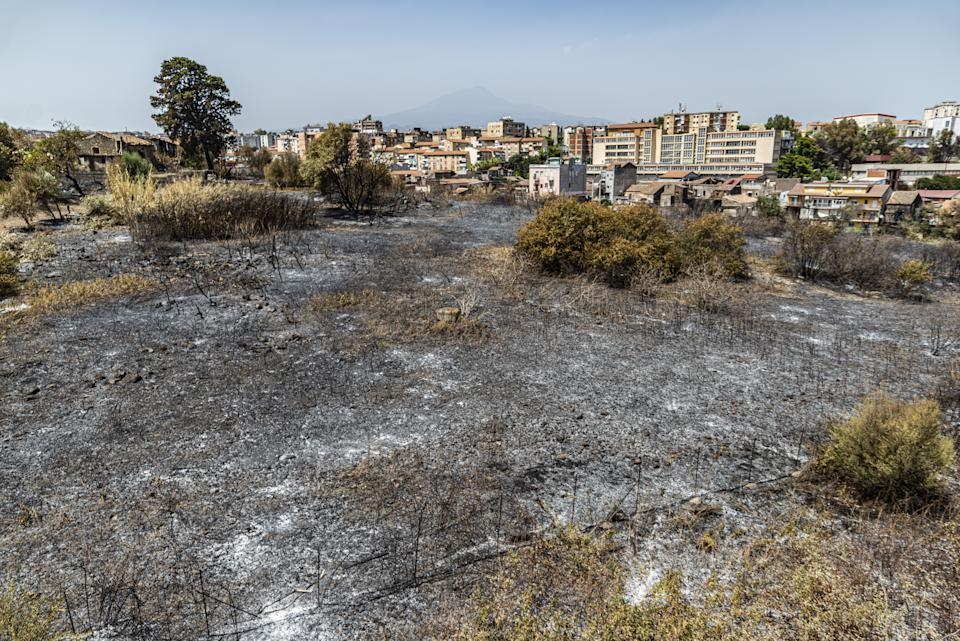 CATANIA, ITALY â AUGUST 01: A view of the aftermath of the wildfires as southern Italy still burning, the fires that have hit Sicily in recent days do not subside and new outbreaks are developing in many areas affected by a strong heat wave on August 01, 2021. The interventions carried out by the firefighters have no end in Sicily, they have been over 250 in the last 24 hours, many of these fires that have affected Catania have kept the firefighters busy until late at night, the numerous fires, including arson, have created too much damage by making the air unbreathable, making it necessary in some cases to evacuate the inhabitants and leading to the closure of the Catania airport for a few hours. Catania August 01, 2021. (Photo by Salvatore Allegra/Anadolu Agency via Getty Images)