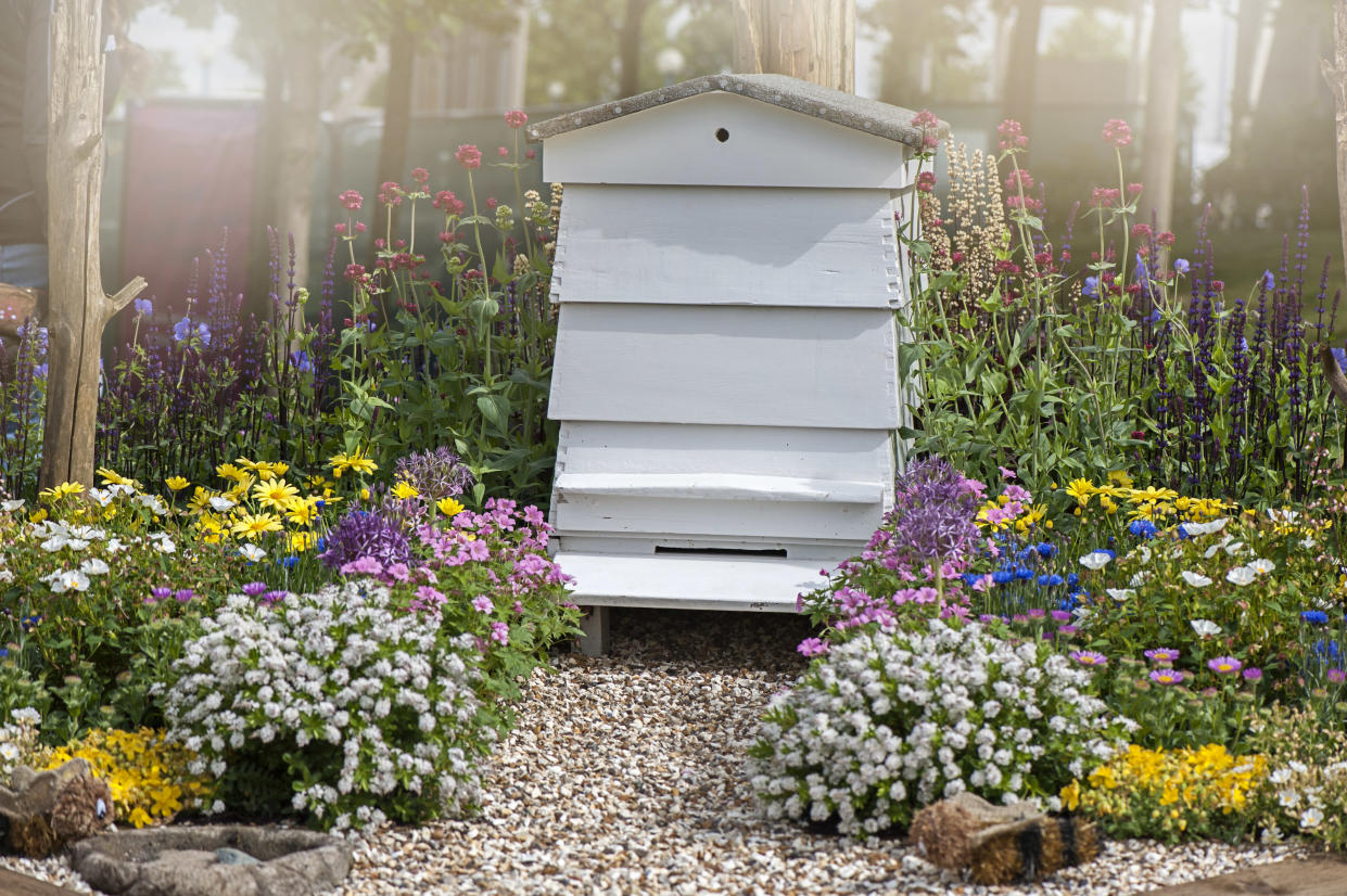 A traditional beehive (Getty Images)